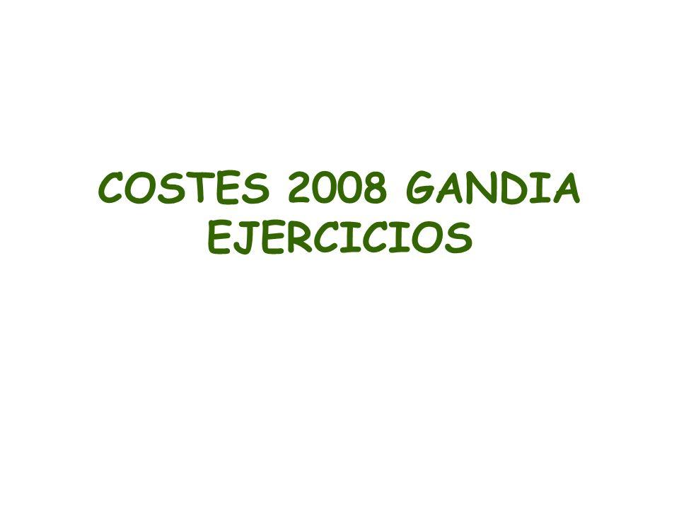 COSTES 2008 GANDIA EJERCICIOS