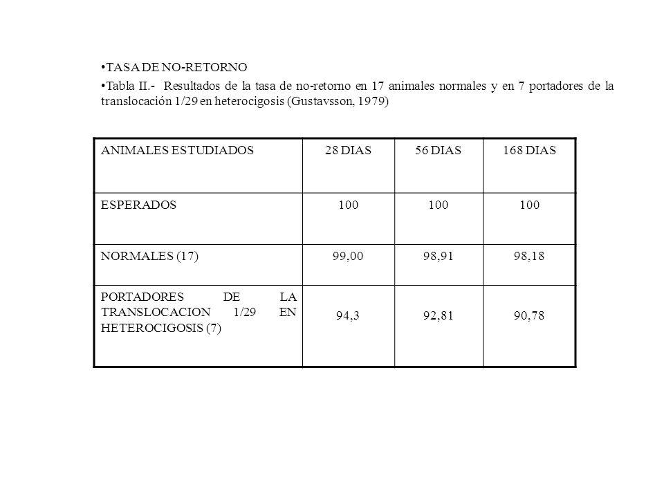 ANIMALES ESTUDIADOS28 DIAS56 DIAS168 DIAS ESPERADOS100 NORMALES (17)99,0098,9198,18 PORTADORES DE LA TRANSLOCACION 1/29 EN HETEROCIGOSIS (7) 94,392,81