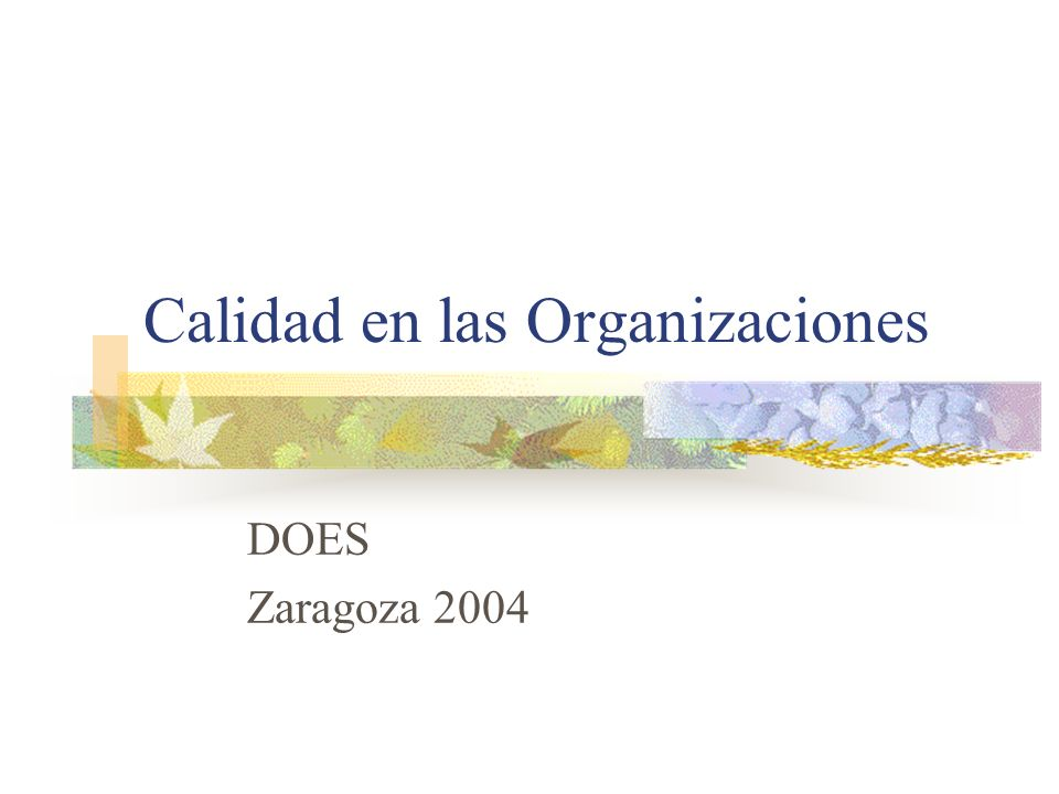 Calidad en las Organizaciones DOES Zaragoza 2004