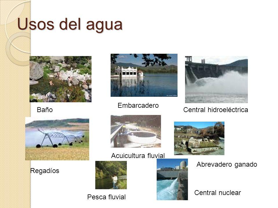 Usos del agua Baño Embarcadero Central hidroeléctrica Regadíos Acuicultura fluvial Pesca fluvial Abrevadero ganado Central nuclear
