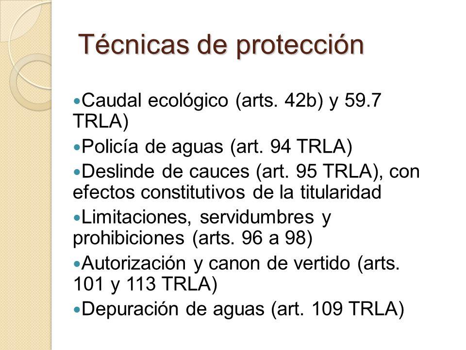 Técnicas de protección Caudal ecológico (arts. 42b) y 59.7 TRLA) Policía de aguas (art. 94 TRLA) Deslinde de cauces (art. 95 TRLA), con efectos consti