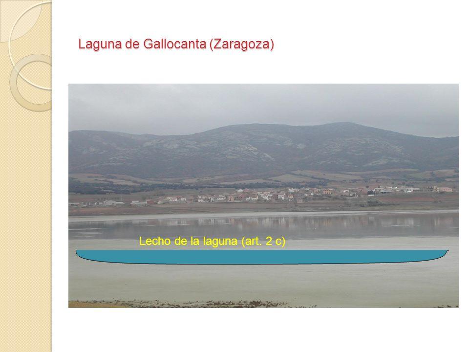 Laguna de Gallocanta (Zaragoza) Lecho de la laguna (art. 2 c)
