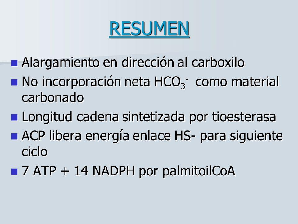RESUMEN Alargamiento en dirección al carboxilo Alargamiento en dirección al carboxilo No incorporación neta HCO 3 - como material carbonado No incorporación neta HCO 3 - como material carbonado Longitud cadena sintetizada por tioesterasa Longitud cadena sintetizada por tioesterasa ACP libera energía enlace HS- para siguiente ciclo ACP libera energía enlace HS- para siguiente ciclo 7 ATP + 14 NADPH por palmitoilCoA 7 ATP + 14 NADPH por palmitoilCoA