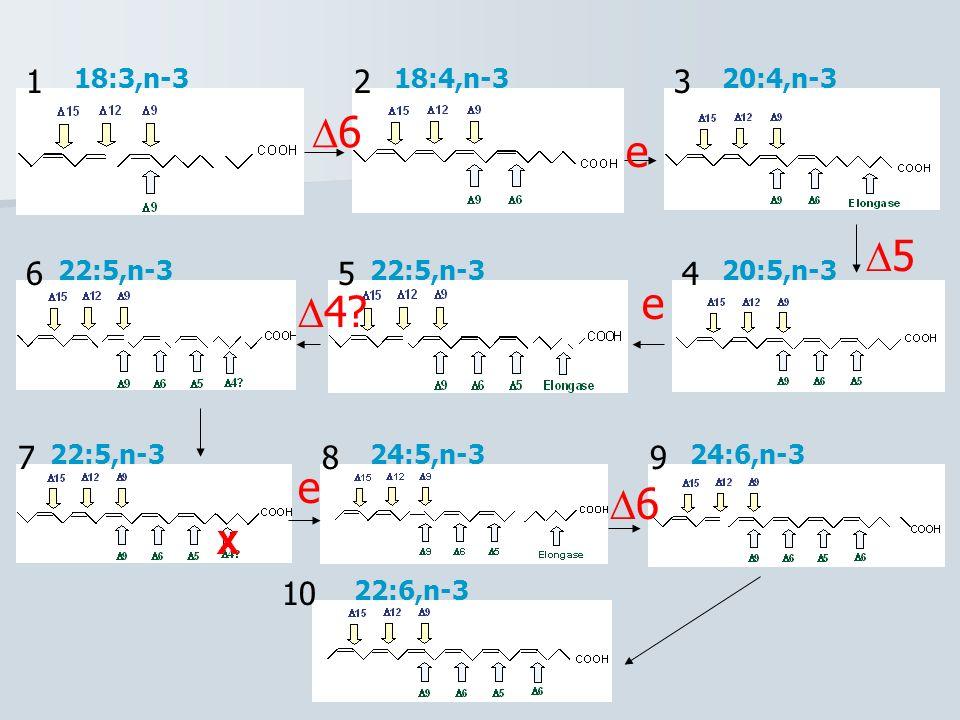 123 456 789 10 6 5 e e e 6 4? 18:3,n-318:4,n-320:4,n-3 20:5,n-322:5,n-3 24:5,n-324:6,n-3 22:6,n-3