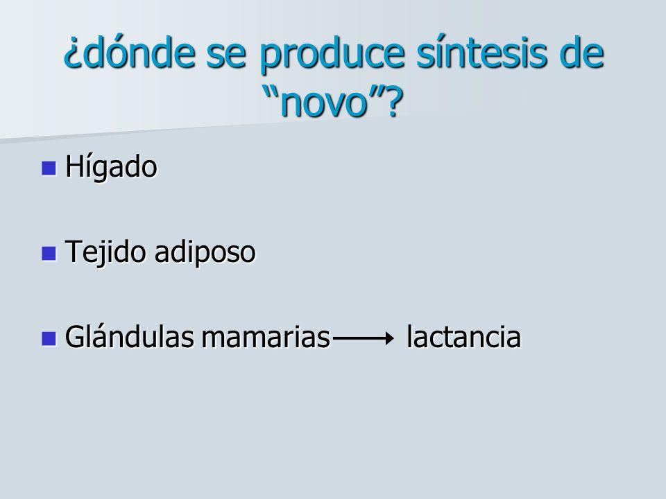 2.- Síntesis de Palmitato