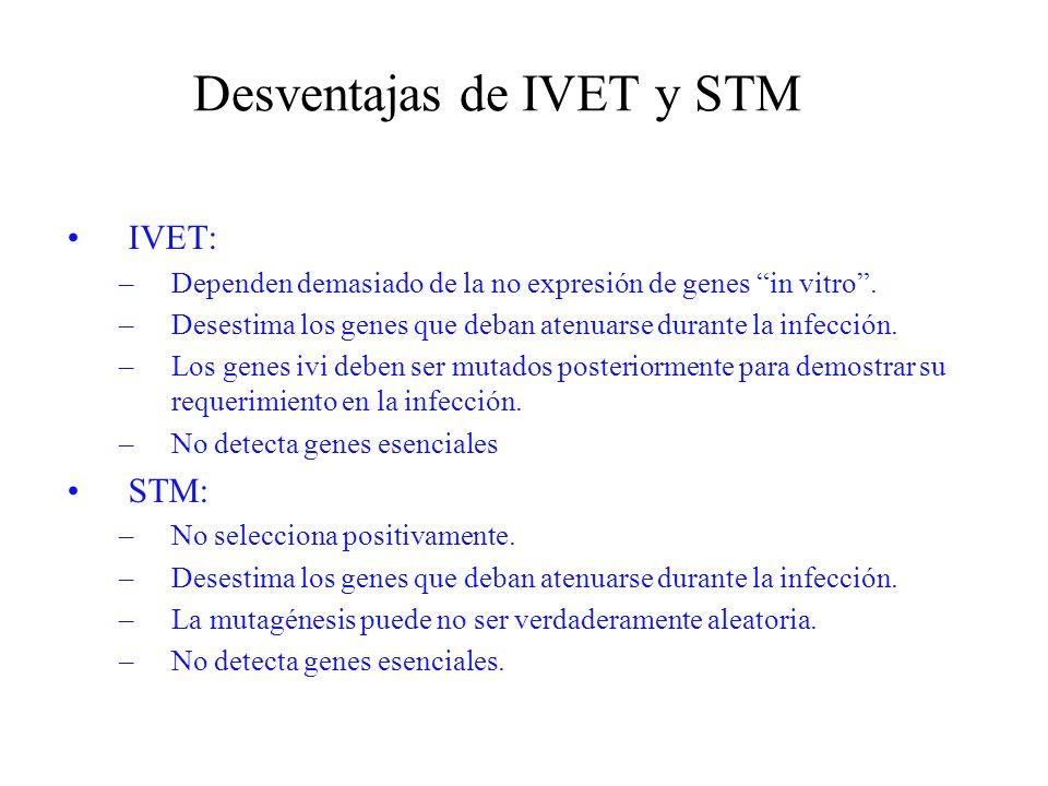 Desventajas de IVET y STM IVET: –Dependen demasiado de la no expresión de genes in vitro. –Desestima los genes que deban atenuarse durante la infecció