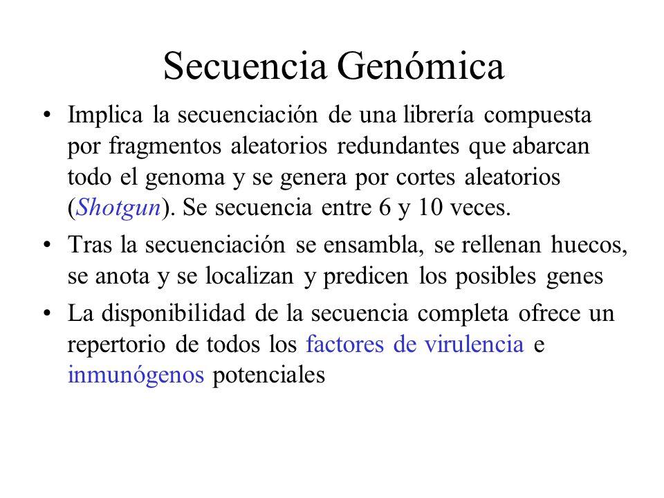 Genómica funcional: Localización de genes importantes en el proceso patológico La adquisición y el análisis de las secuencias genómicas no es el objetivo final, sino un punto de partida.