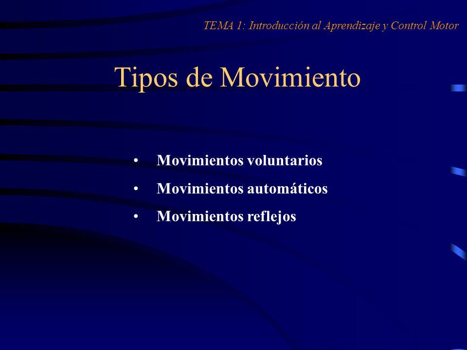 El ADM desde la Praxiología Motriz TEMA 1: Introducción al Aprendizaje y Control Motor ACCIÓN MOTRIZ COMPORTAMIENTO MOTOR + VIVENCIA CORPORAL CONDUCTA MOTRIZ