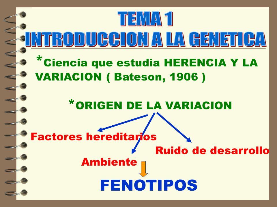 * Ciencia que estudia HERENCIA Y LA VARIACION ( Bateson, 1906 ) * ORIGEN DE LA VARIACION Ambiente Factores hereditarios Ruido de desarrollo FENOTIPOS