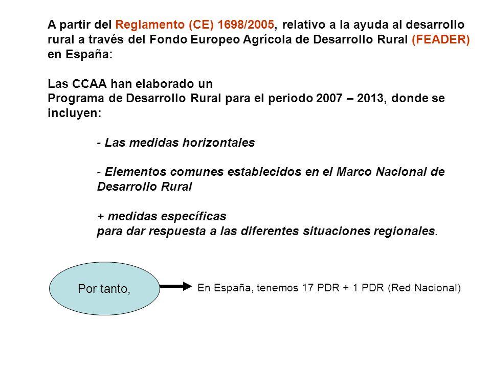 Un ejemplo: Comunidad Valenciana PERIODO 2007-2013 Un ejemplo: Comunidad Valenciana PERIODO 2007-2013 Ejes principales PROGRAMA DE DESARROLLO RURAL DE LA CV.
