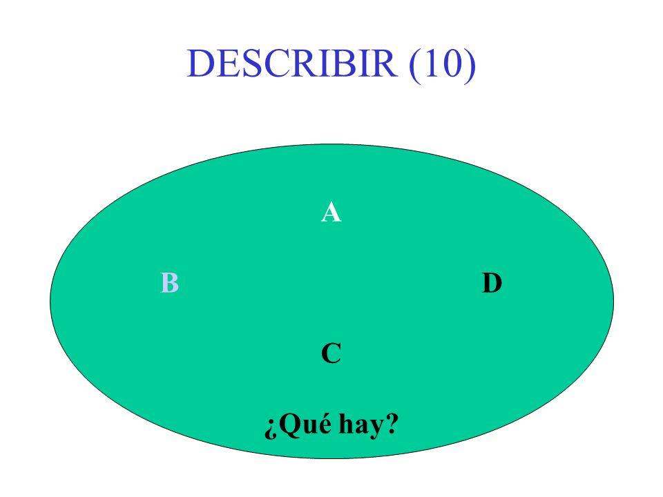 DESCRIBIR (10) A B D C ¿Qué hay?