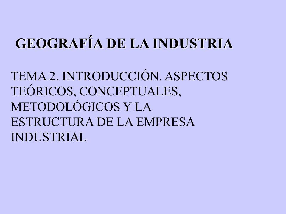 GEOGRAFÍA DE LA INDUSTRIA TEMA 2. INTRODUCCIÓN. ASPECTOS TEÓRICOS, CONCEPTUALES, METODOLÓGICOS Y LA ESTRUCTURA DE LA EMPRESA INDUSTRIAL