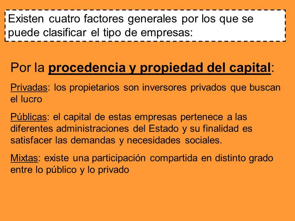 Existen cuatro factores generales por los que se puede clasificar el tipo de empresas: Por la procedencia y propiedad del capital: Privadas: los propi