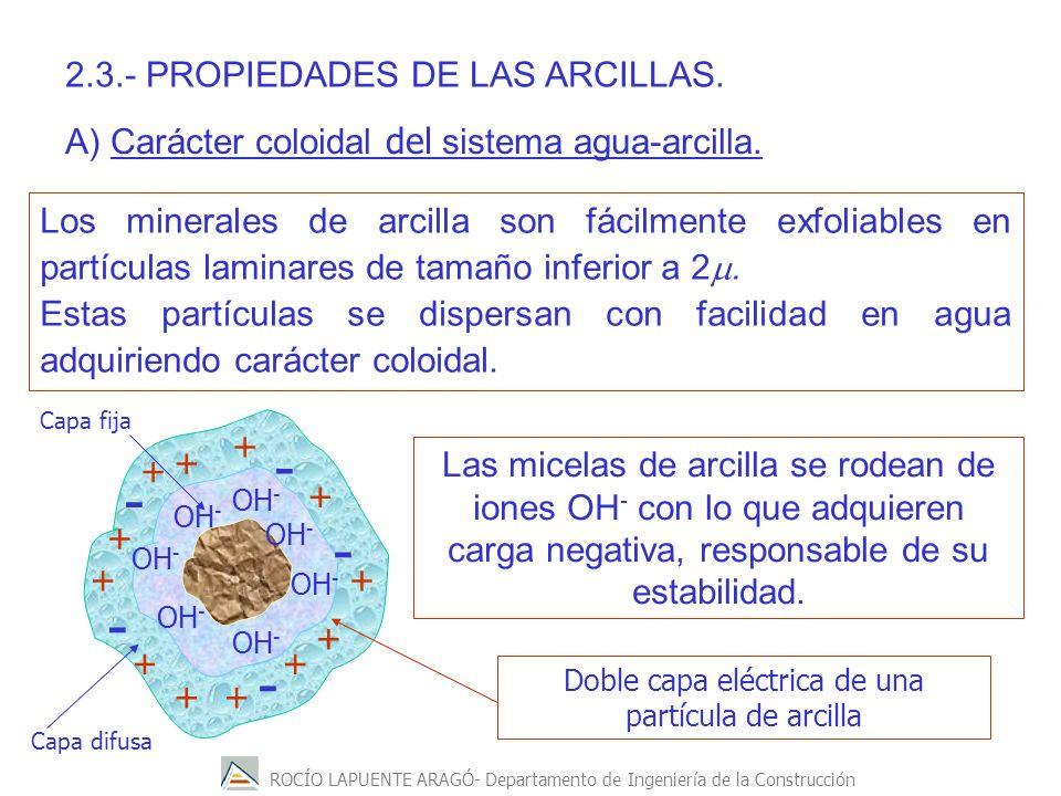 ROCÍO LAPUENTE ARAGÓ- Departamento de Ingeniería de la Construcción Los minerales de arcilla son fácilmente exfoliables en partículas laminares de tam