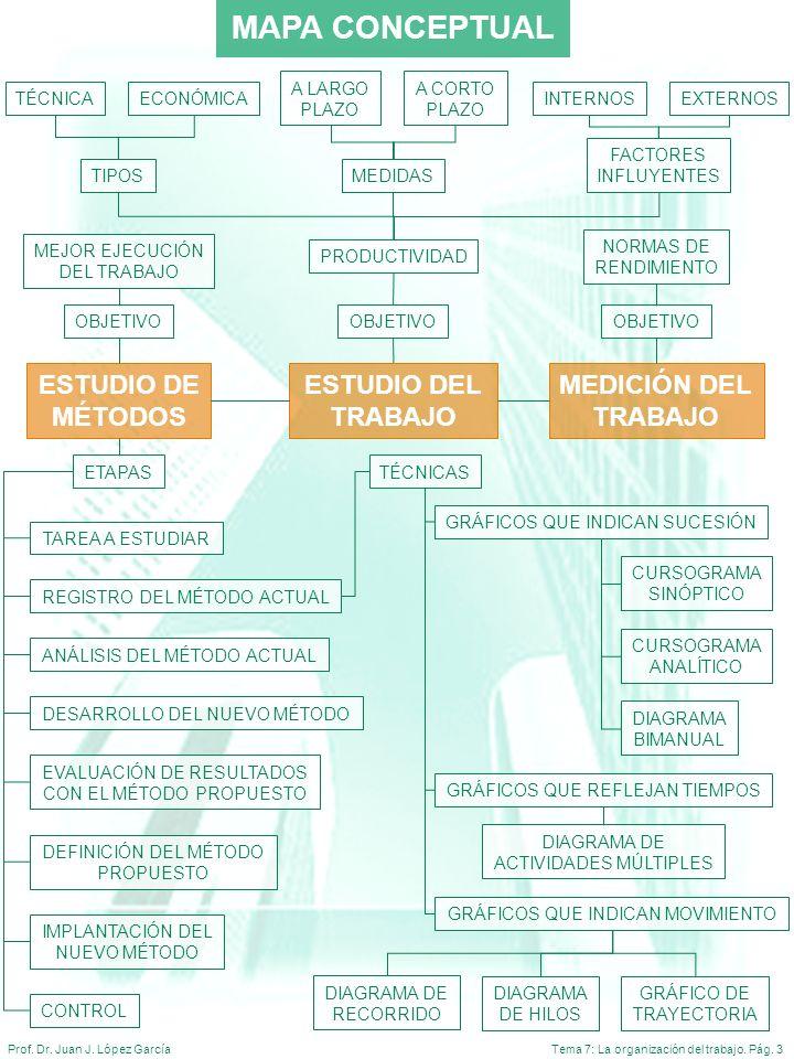Tema 7: La organización del trabajo. Pág. 3Prof. Dr. Juan J. López García MAPA CONCEPTUAL ESTUDIO DE MÉTODOS MEDICIÓN DEL TRABAJO ETAPAS REGISTRO DEL