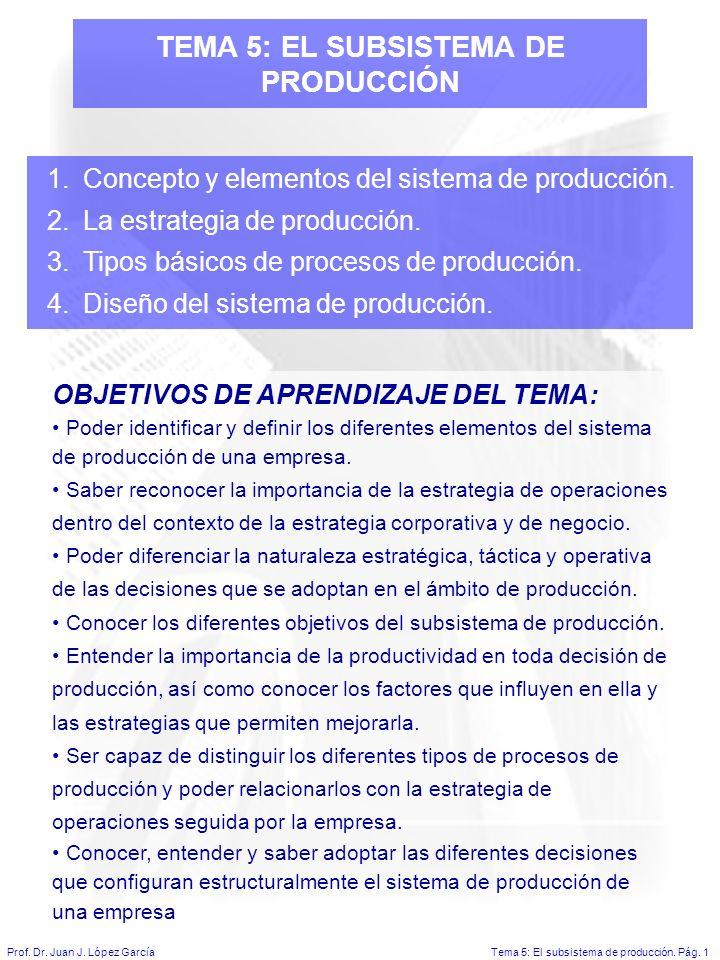 Tema 5: El subsistema de producción.Pág. 1Prof. Dr.