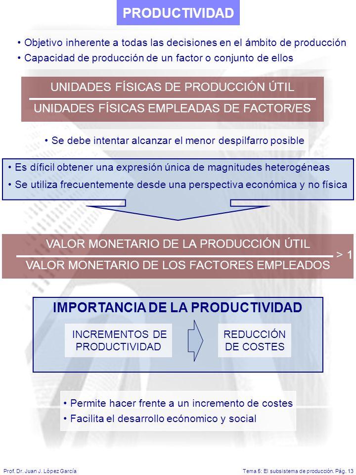 Tema 5: El subsistema de producción.Pág. 13Prof. Dr.
