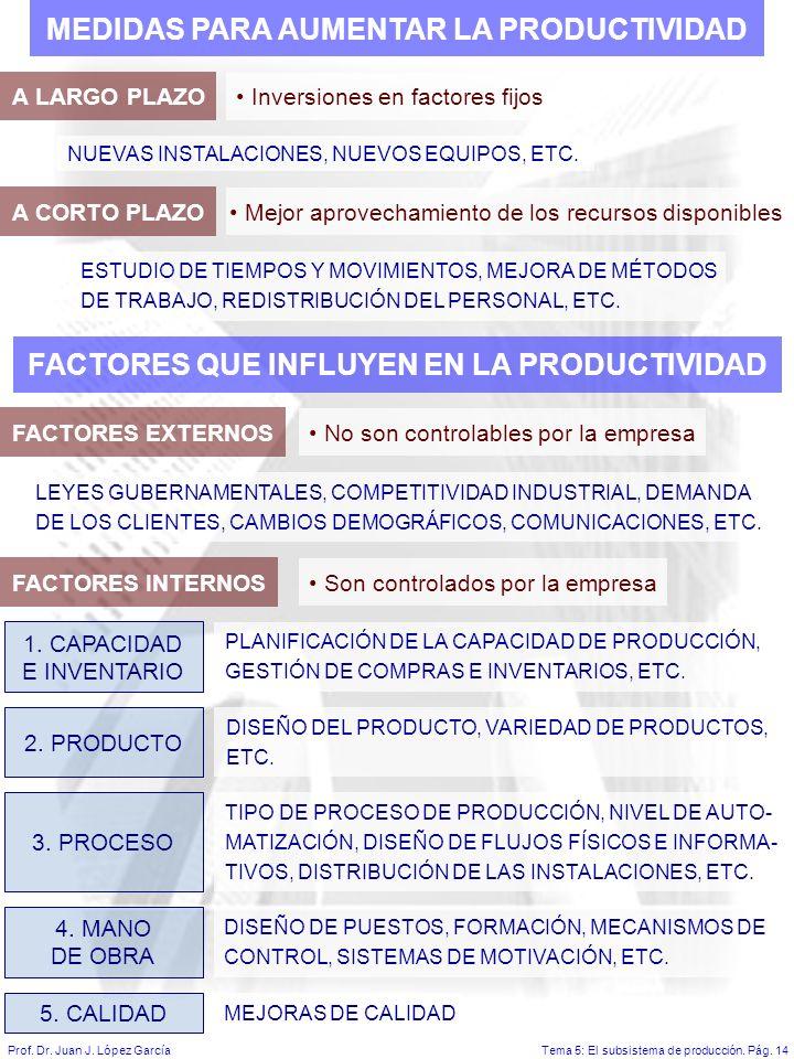 Tema 5: El subsistema de producción.Pág. 14Prof. Dr.