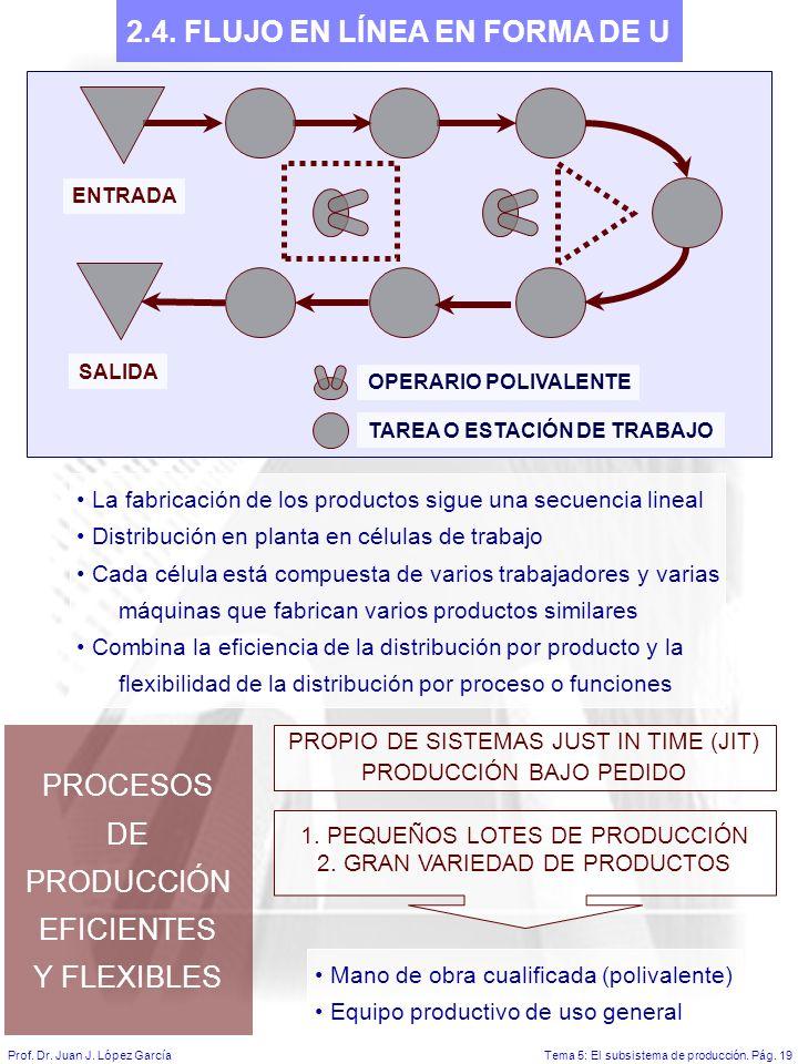 Tema 5: El subsistema de producción.Pág. 19Prof. Dr.