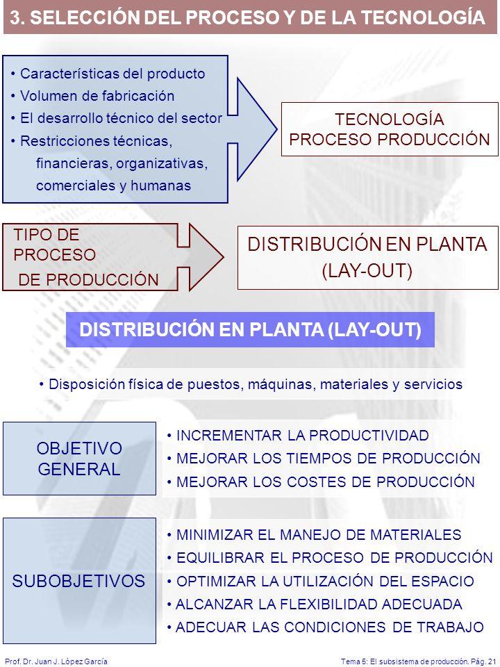 Tema 5: El subsistema de producción.Pág. 21Prof. Dr.