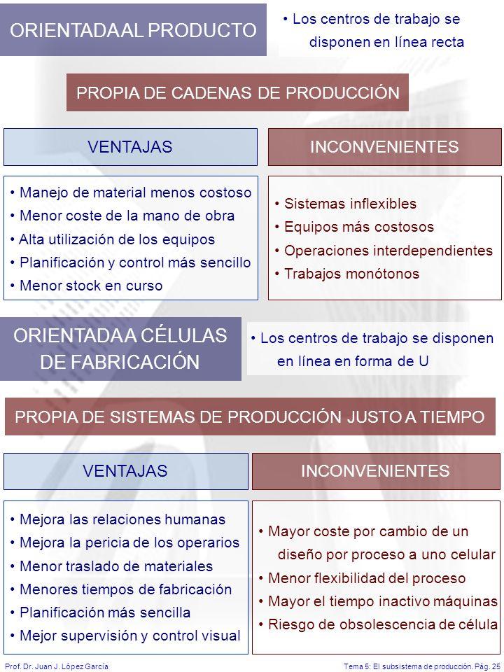 Tema 5: El subsistema de producción.Pág. 25Prof. Dr.