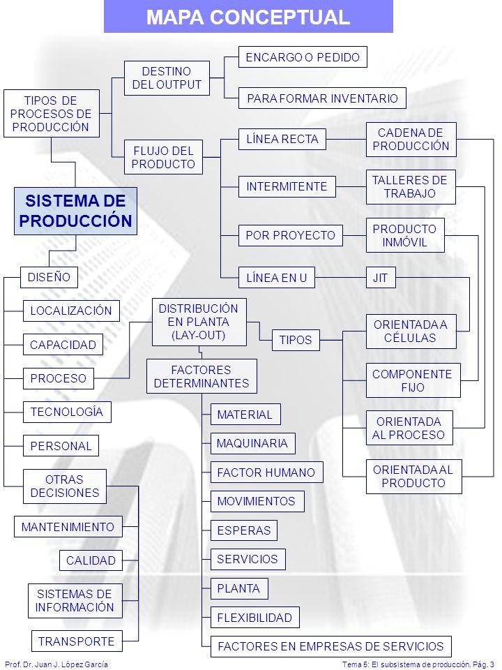 Tema 5: El subsistema de producción.Pág. 3Prof. Dr.