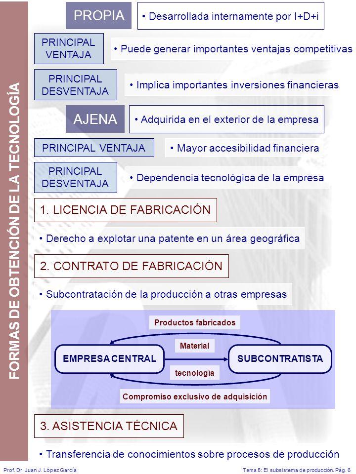 Tema 5: El subsistema de producción.Pág. 6Prof. Dr.