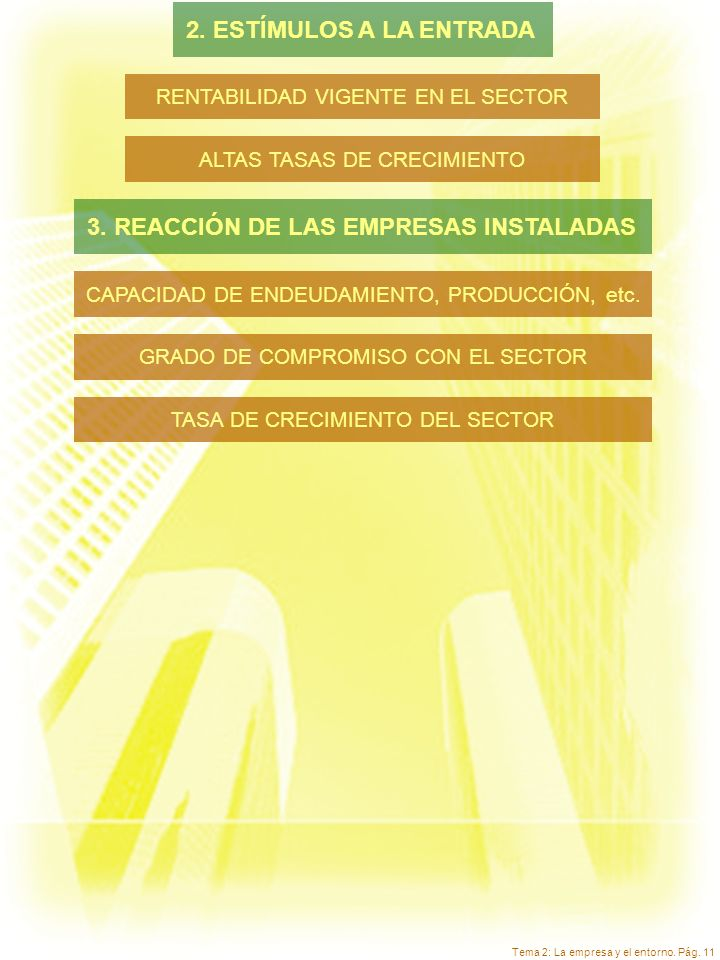 Tema 2: La empresa y el entorno. Pág. 11 RENTABILIDAD VIGENTE EN EL SECTOR ALTAS TASAS DE CRECIMIENTO CAPACIDAD DE ENDEUDAMIENTO, PRODUCCIÓN, etc. GRA