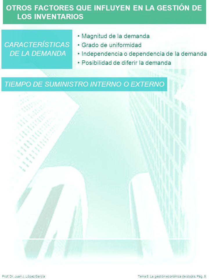 Tema 6: La gestión económica de stocks. Pág. 9Prof. Dr. Juan J. López García OTROS FACTORES QUE INFLUYEN EN LA GESTIÓN DE LOS INVENTARIOS Magnitud de