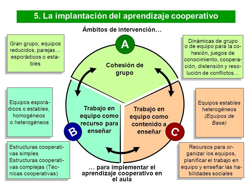 Universidad de Vic. Laboratorio de Psicopedagogía (2008) 12 4. El aprendizaje cooperativo Los miembros de un equipo de aprendizaje cooperativo tienen