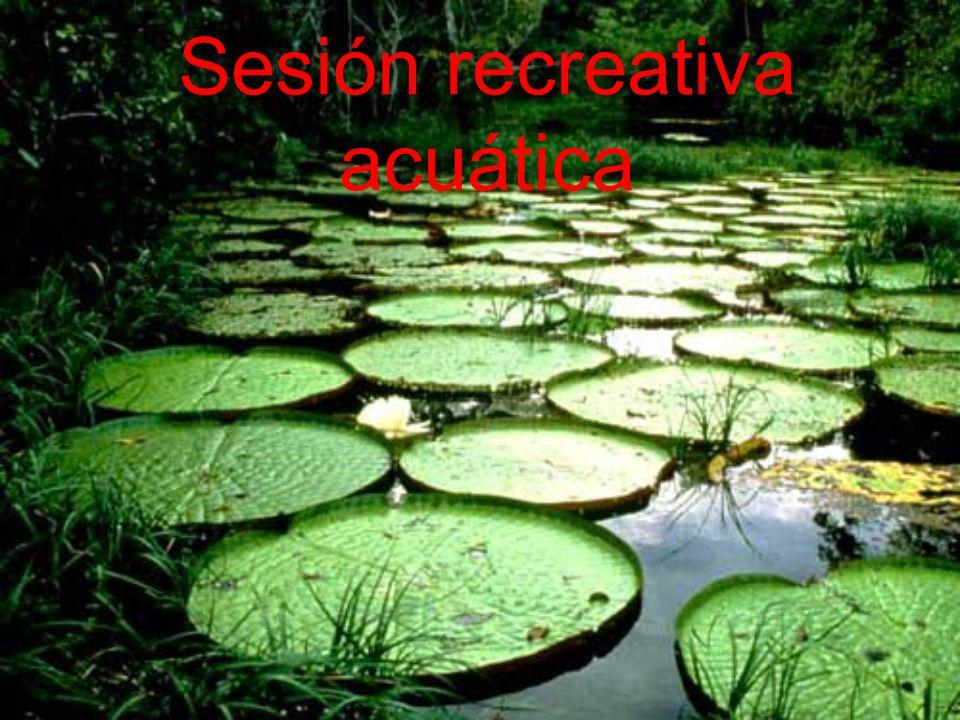 Sesión recreativa acuática