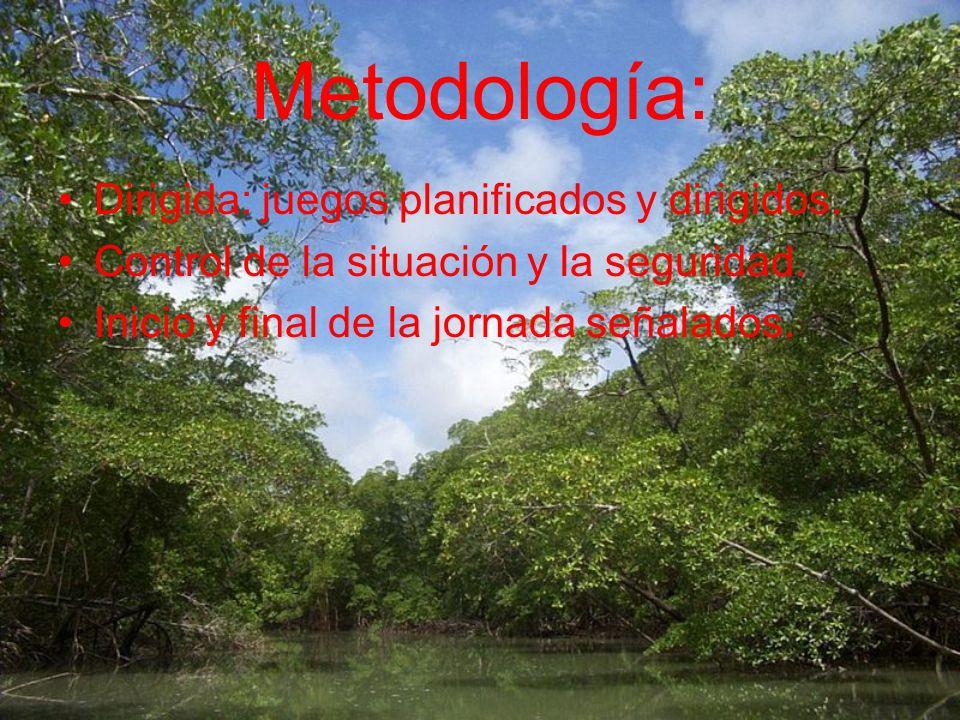 Metodología: Dirigida: juegos planificados y dirigidos.
