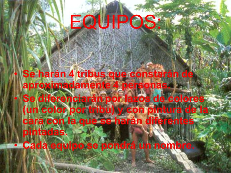 AMBIENTACIÓN: Amazonas. Conflicto entre 4tribus por un territorio. Los técnicos (3grandes sabios) proponen la competición para la solución del conflic