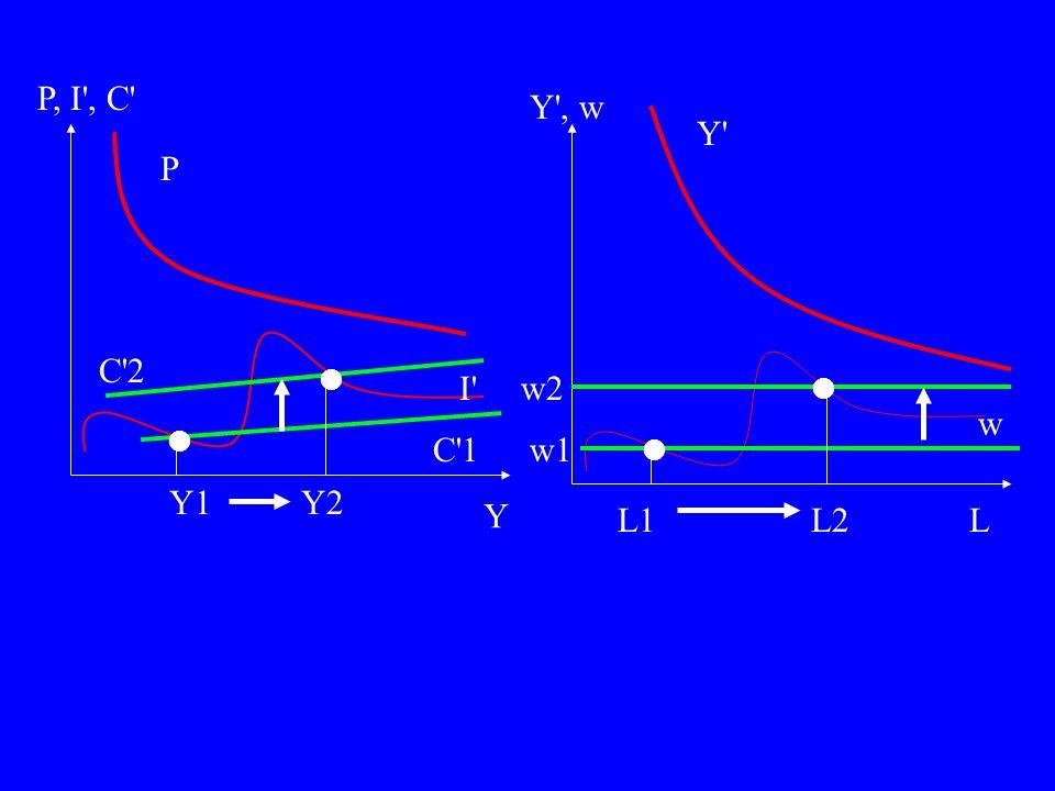 Y1 Y w Y , w L Y w1 w2 P, I , C C 1 C 2 Y2 L1L2 P I