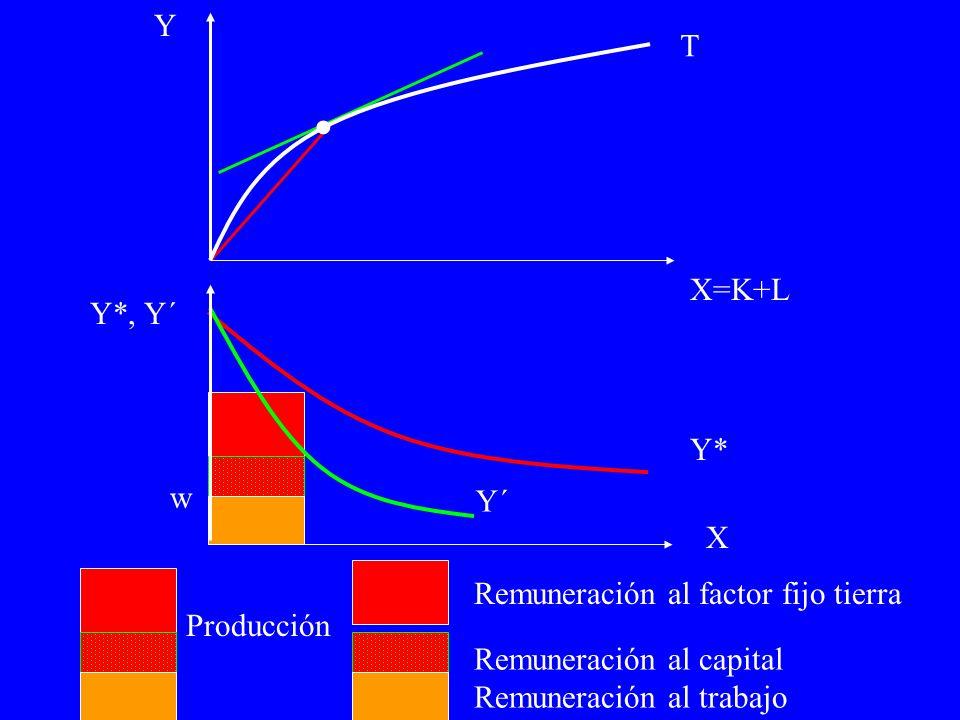 T Producción Remuneración al factor fijo tierra Remuneración al capital Remuneración al trabajo Y´ Y*, Y´ Y X=K+L X Y*.