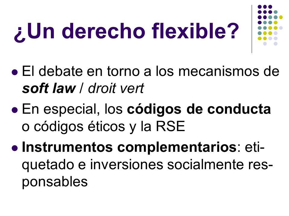 ¿Un derecho flexible? El debate en torno a los mecanismos de soft law / droit vert En especial, los códigos de conducta o códigos éticos y la RSE Inst