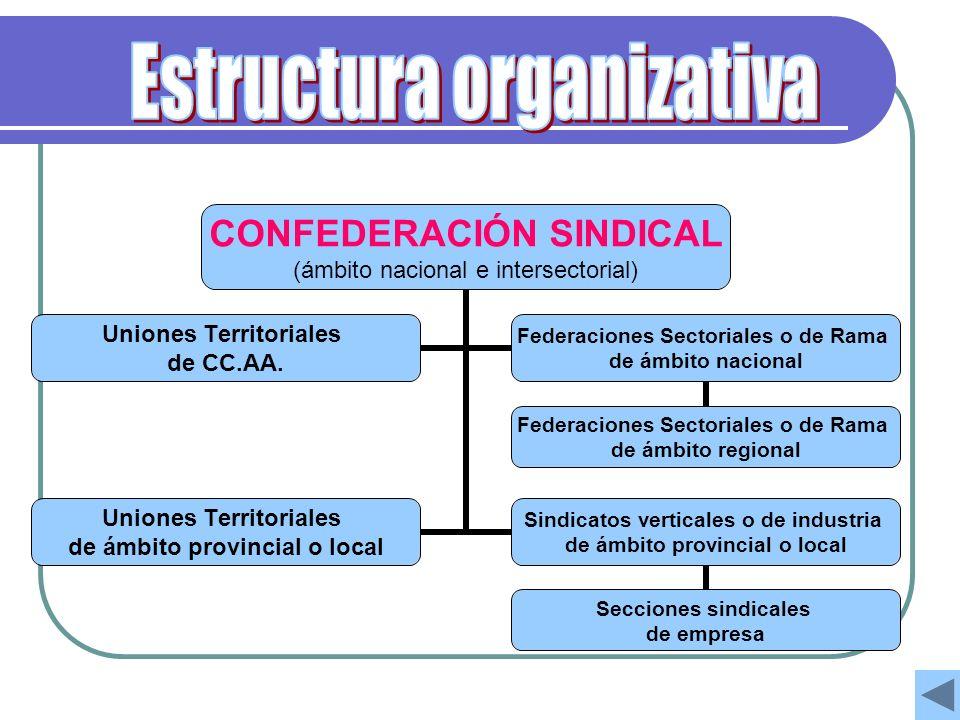 CONFEDERACIÓN SINDICAL (ámbito nacional e intersectorial) Uniones Territoriales de CC.AA. Federaciones Sectoriales o de Rama de ámbito nacional Federa