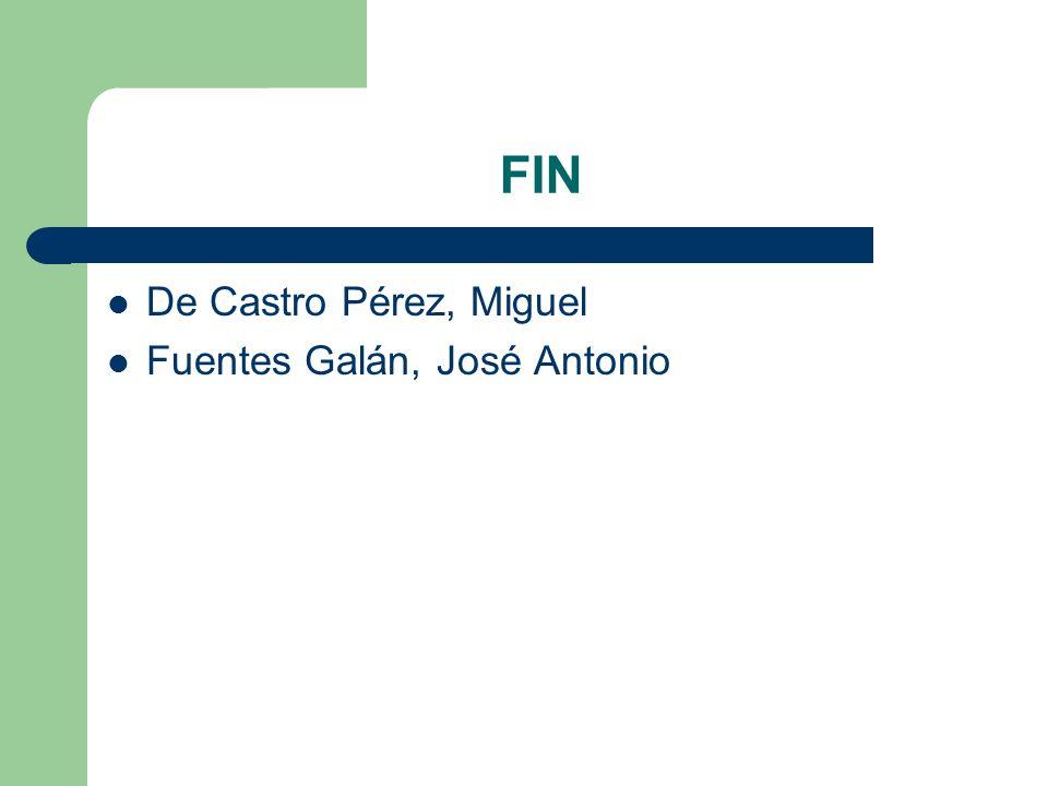 FIN De Castro Pérez, Miguel Fuentes Galán, José Antonio
