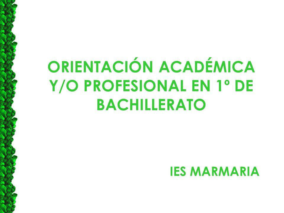 ORIENTACIÓN ACADÉMICA Y/O PROFESIONAL EN 1º DE BACHILLERATO IES MARMARIA