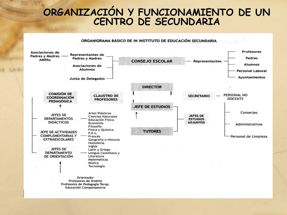 ORGANIZACIÓN Y FUNCIONAMIENTO DE UN CENTRO DE SECUNDARIA