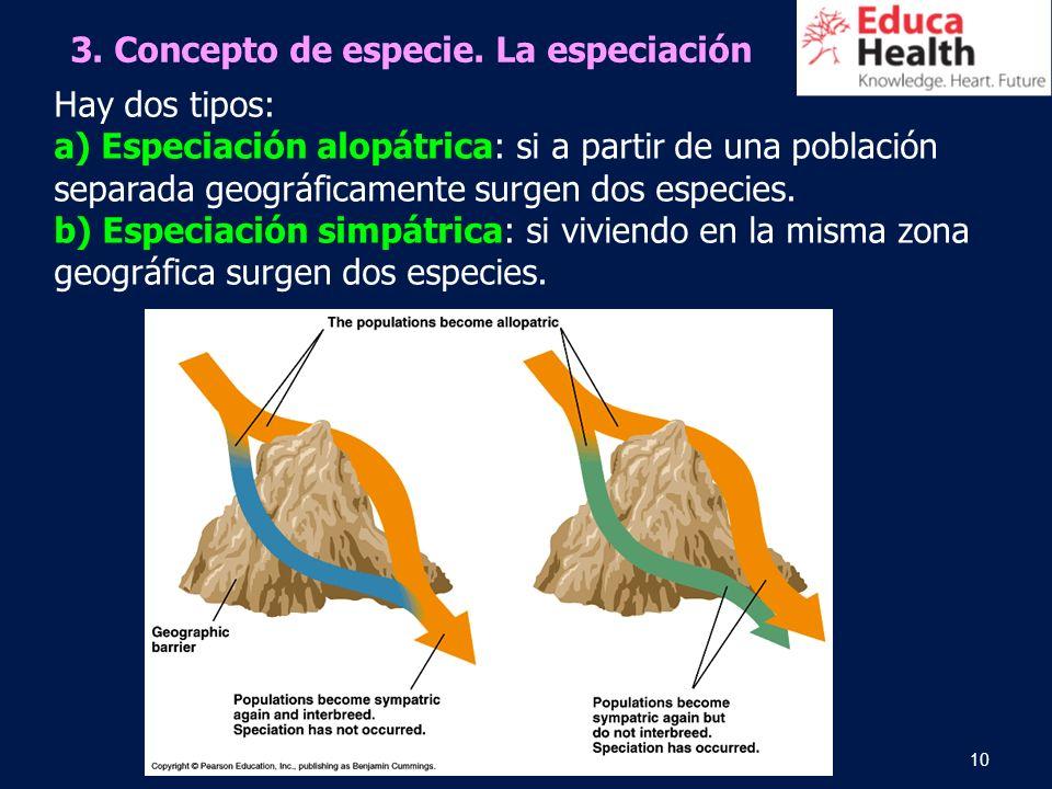 10 Hay dos tipos: a) Especiación alopátrica: si a partir de una población separada geográficamente surgen dos especies. b) Especiación simpátrica: si