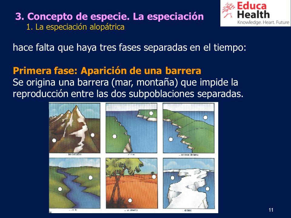11 3. Concepto de especie. La especiación 1. La especiación alopátrica hace falta que haya tres fases separadas en el tiempo: Primera fase: Aparición