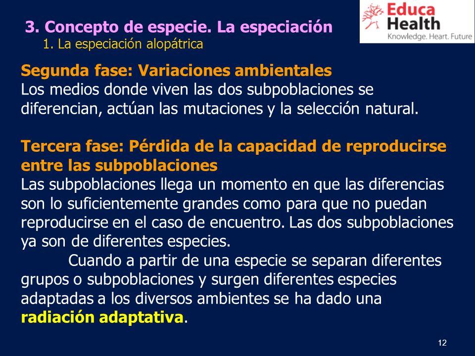 12 Segunda fase: Variaciones ambientales Los medios donde viven las dos subpoblaciones se diferencian, actúan las mutaciones y la selección natural. T