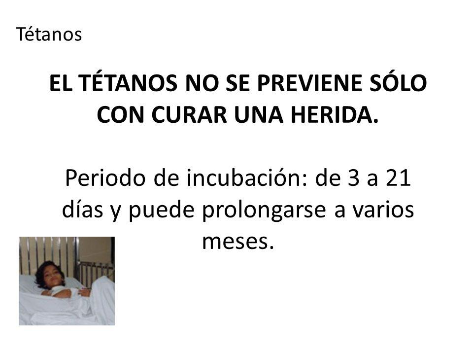 EL TÉTANOS NO SE PREVIENE SÓLO CON CURAR UNA HERIDA. Periodo de incubación: de 3 a 21 días y puede prolongarse a varios meses. Tétanos