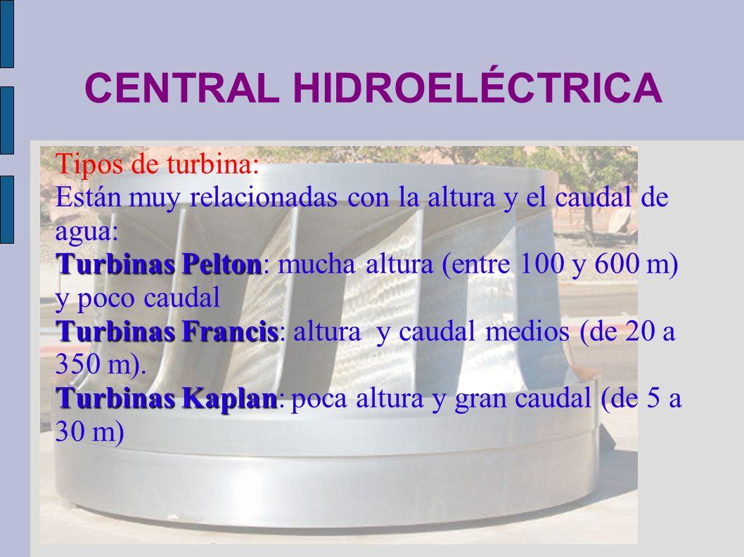 CENTRAL HIDROELÉCTRICA Tipos de turbina: Están muy relacionadas con la altura y el caudal de agua: Turbinas Pelton Turbinas Pelton: mucha altura (entr