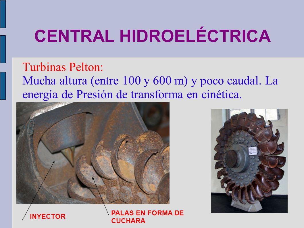 CENTRAL HIDROELÉCTRICA Turbinas Pelton: Mucha altura (entre 100 y 600 m) y poco caudal. La energía de Presión de transforma en cinética. INYECTOR PALA