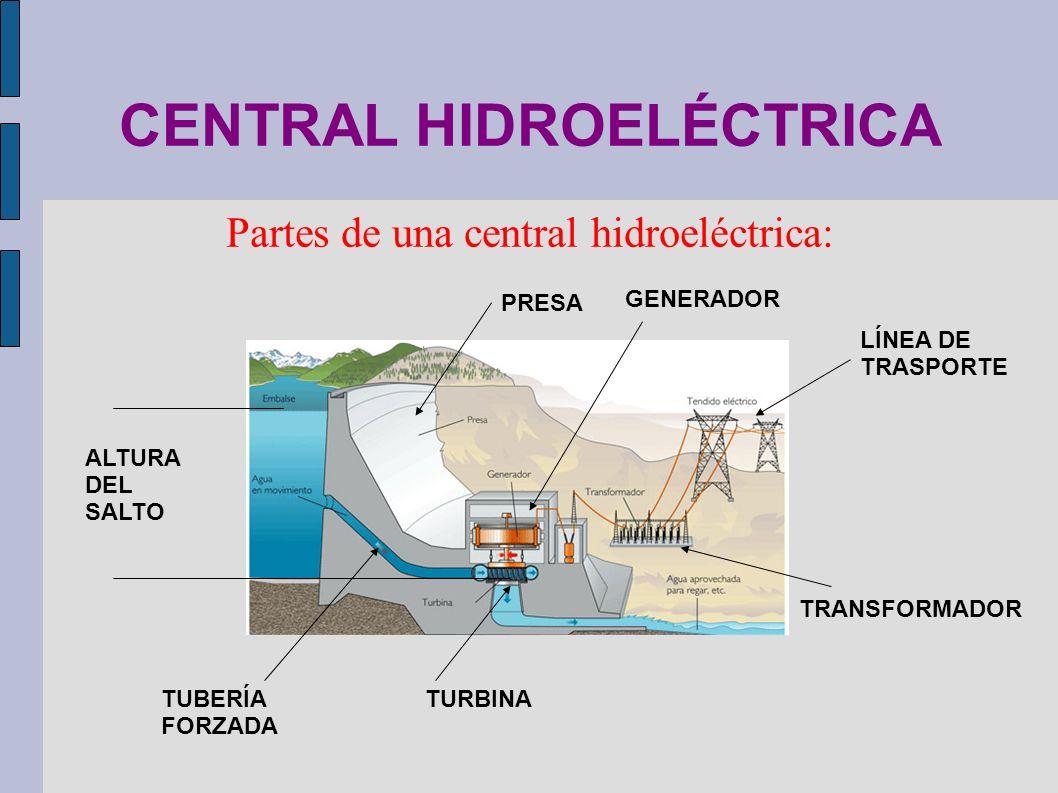 CENTRAL HIDROELÉCTRICA Partes de una central hidroeléctrica: PRESA TURBINATUBERÍA FORZADA GENERADOR TRANSFORMADOR ALTURA DEL SALTO LÍNEA DE TRASPORTE