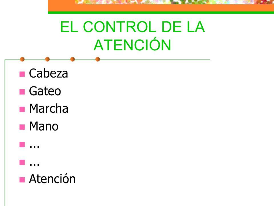 EL CONTROL DE LA ATENCIÓN Cabeza Gateo Marcha Mano... Atención