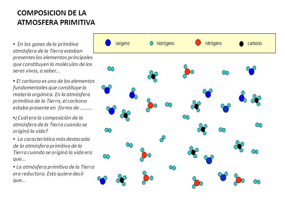 COMPOSICION DE LA ATMOSFERA PRIMITIVA En los gases de la primitiva atmósfera de la Tierra estaban presentes los elementos principales que constituyen