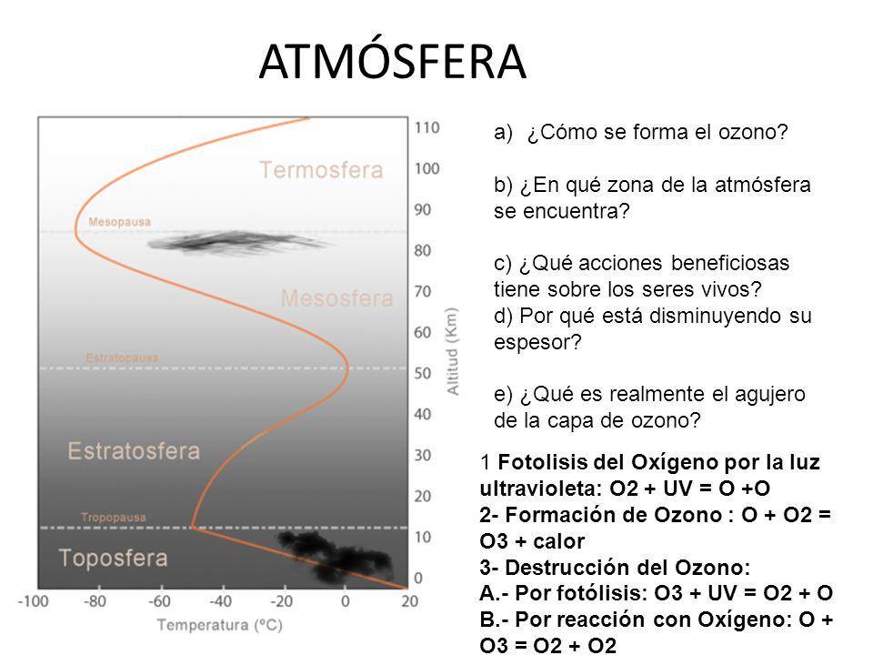 a)¿Cómo se forma el ozono? b) ¿En qué zona de la atmósfera se encuentra? c) ¿Qué acciones beneficiosas tiene sobre los seres vivos? d) Por qué está di